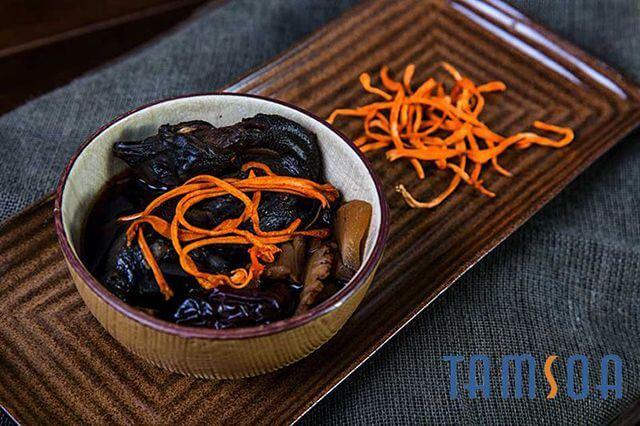 món ăn từ đông trùng hạ thảo