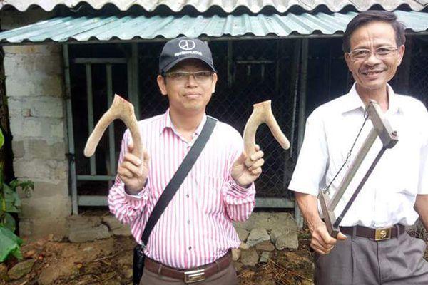 nhung hươu tươi Hương Sơn