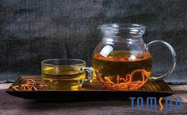 uống trà đông trùng hạ thảo