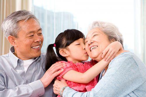 hướng dẫn sử dụng cao hươu cho người cao tuổi
