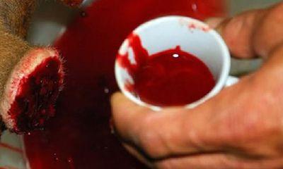 Lộc nhung huyết là gì? Rượu huyết nhung hươu để được bao lâu?