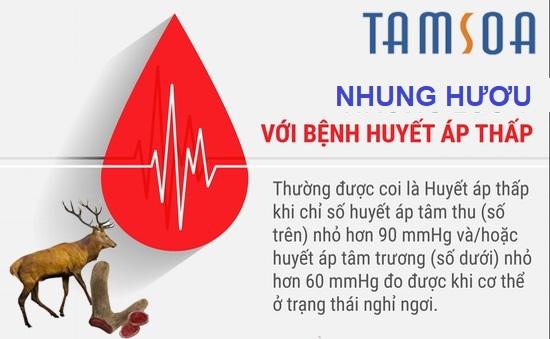 nhung hươu ổn định huyết áp thấp