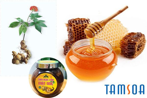 Cách sử dụng Sâm Ngọc Linh ngâm mật ong