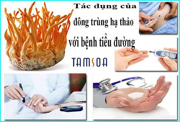 Tác dụng của đông trùng hạ thảo với bệnh tiểu đường